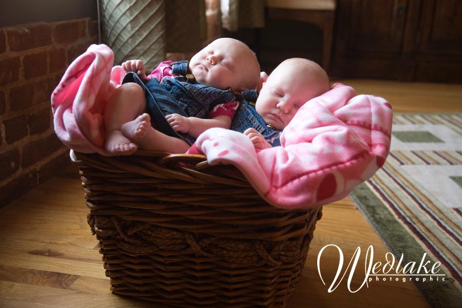 baby photographer denver twins