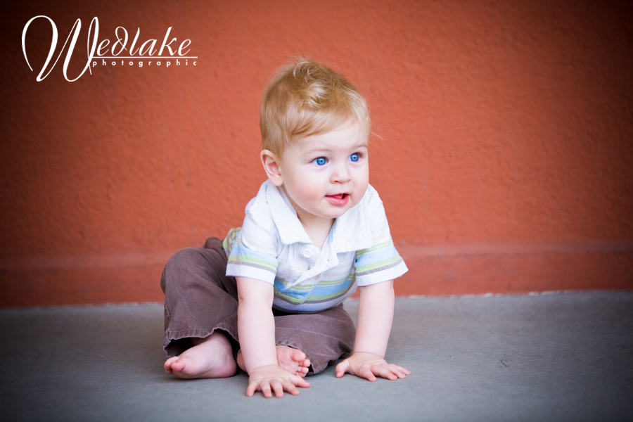 denver baby photographers