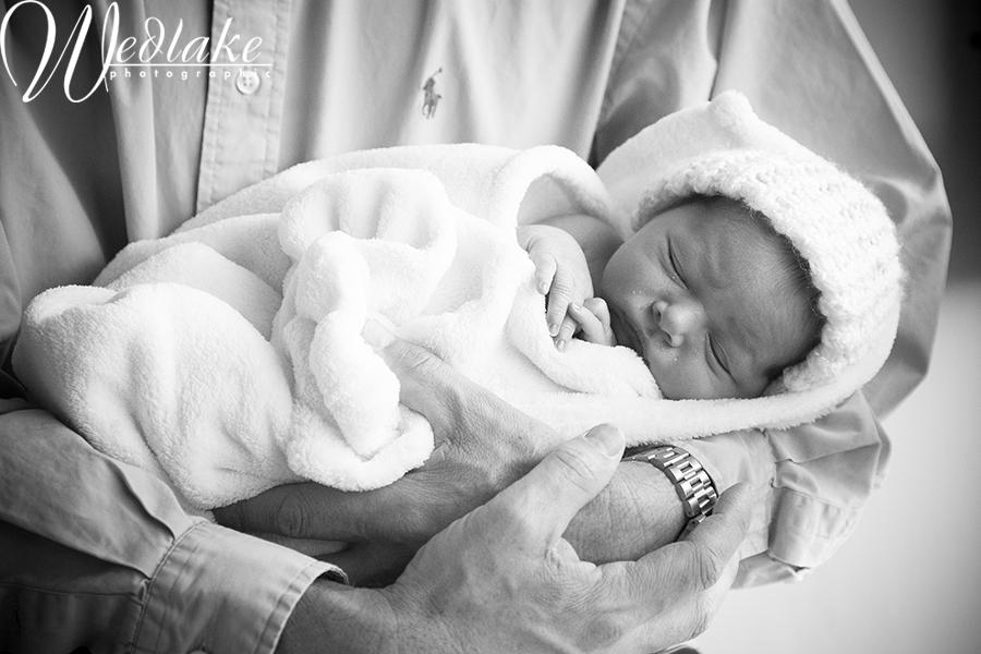 denver newborn baby photographer