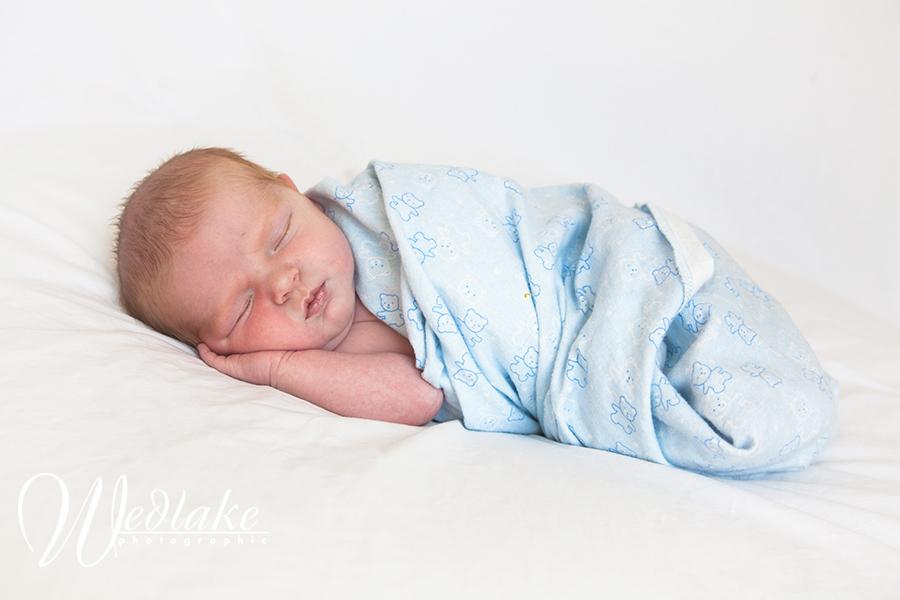 dener newborn photographer
