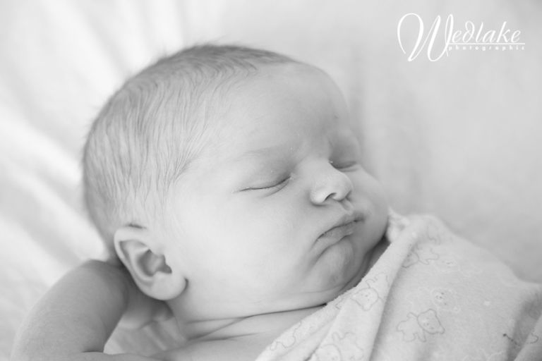 newborn baby photography denver co