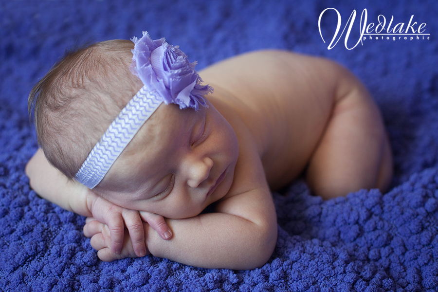 Arvada CO newborn baby photographer