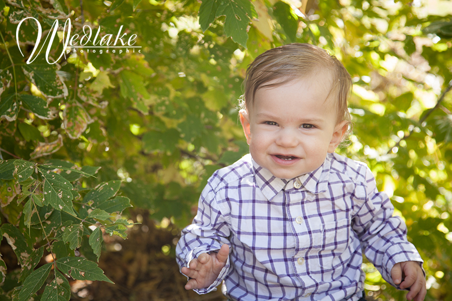 Golden CO Baby Photography