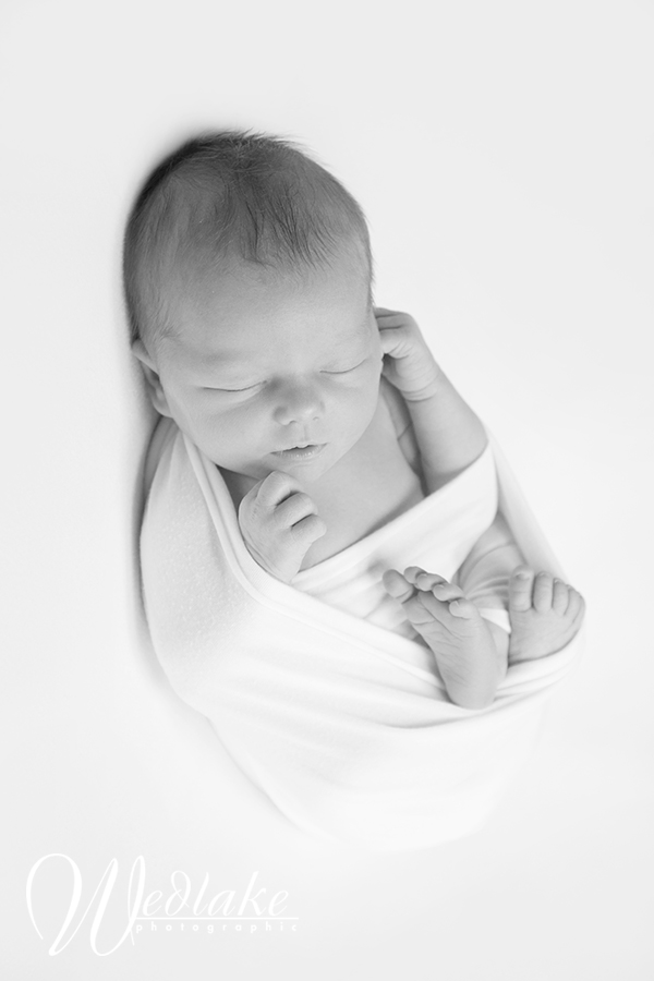 Denver Newborn Photographer | Lifestyle and Posed